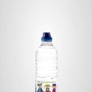 Botella 33cl superhéroes Peñaclara
