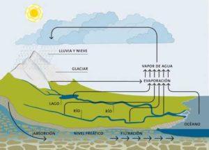 ciclo del agua agua y vida